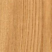 American Hard Maple