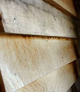 British Feather Edge Elm
