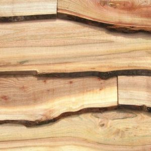 Waney Edge Elm Cladding